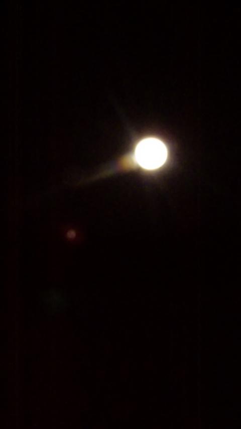 月がとっても綺麗です